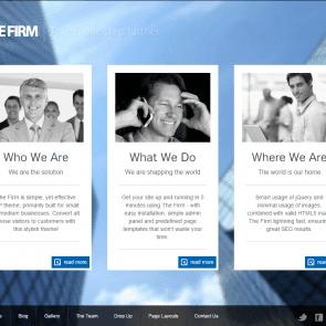 הפירמה - The Firm - תבנית וורדפרס פשוטה לחברות