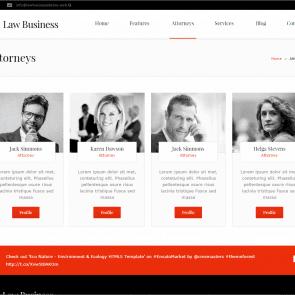 עסקי דין - תבנית לפרקליטים ועורכי דין